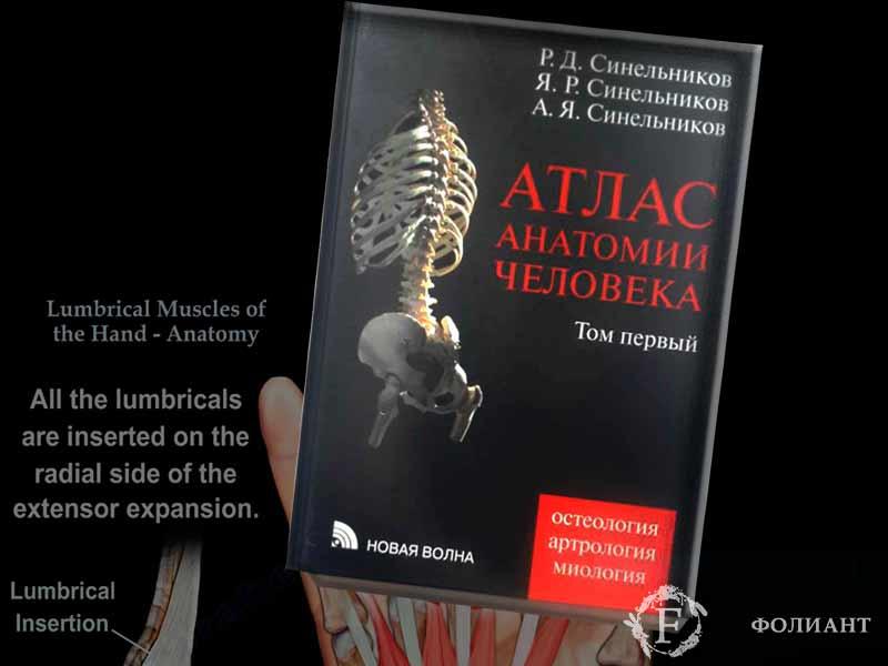 atlas-of-anatomy-of-human-body-Foliant_Kg