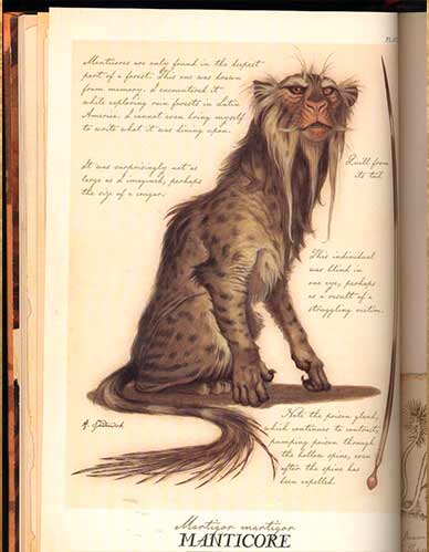 the_cronicals_of_Spiderwick_lion_Foliant_kg